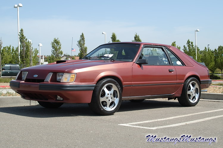 The Ford Mustang 1979  1986 Pics MustangsMustangs