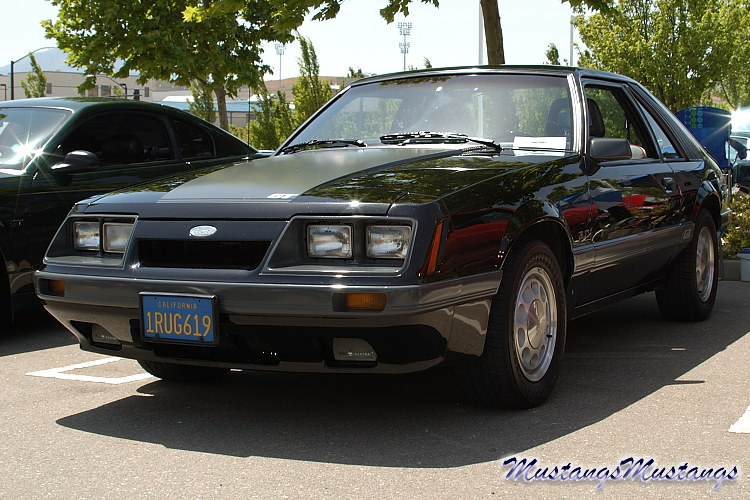 The Ford Mustang: 1979 - 1986 Pics -MustangsMustangs